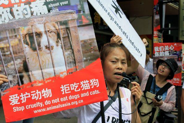 CHINA-ANIMAL-RIGHTS